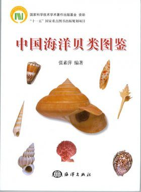 Atlas of Marine Mollusks in China [Chinese]