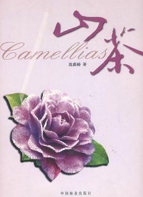 Camellias [Chinese]