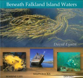 Beneath Falkland Island Waters