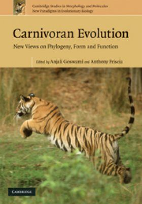 Carnivoran Evolution