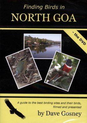 Finding Birds in North Goa - The DVD (Region 2)