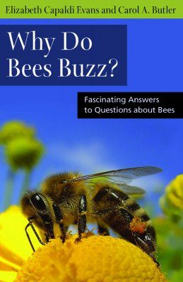 Why Do Bees Buzz?