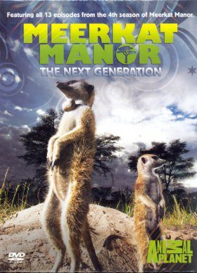 Meerkat Manor - DVD: Series 4 (Region 2)