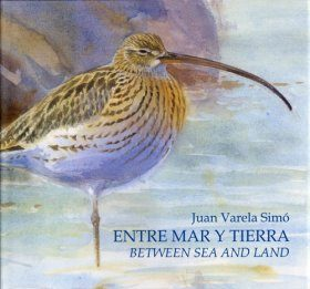 Between Sea and Land / Entre Mar y Tierra