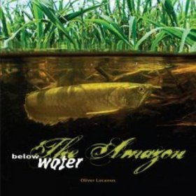 The Amazon Below Water