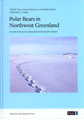Polar Bears in Northwest Greenland