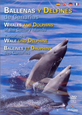 Whales and Dolphins of the Canary Islands (All Regions)