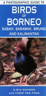 A Photographic Guide to Birds of Borneo