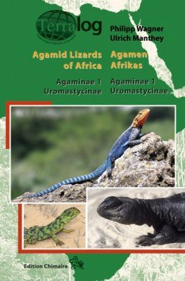Agamid Lizards of Africa / Agamen Afrikas