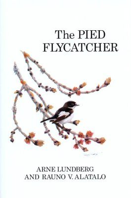 The Pied Flycatcher