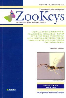 ZooKeys 55: Calosota Curtis (Hymenoptera, Chalcidoidea, Eupelmidae) - Review of the New World and European Fauna Including Revision of Species from the West Indies and Central and North America