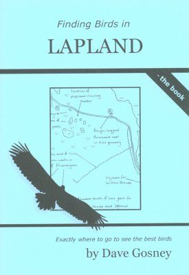 Finding Birds in Lapland