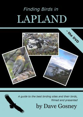 Finding Birds in Lapland - The DVD (Region 2)