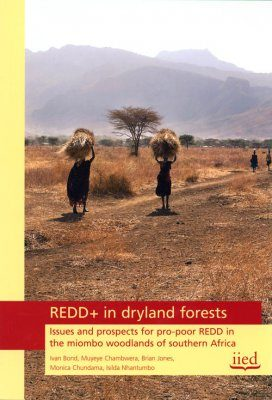 REDD+ in Dryland Forests