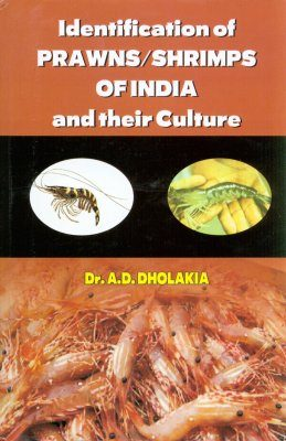 Identification of Prawns / Shrimps of India and their Culture