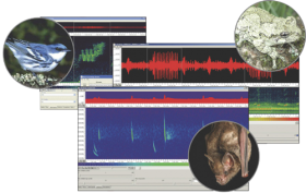 Song Scope v4.x Bioacoustics Software