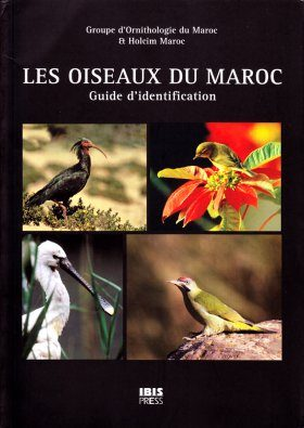 Les Oiseaux du Maroc: Guide d'Identification [The Birds of Morocco: Identification Guide]