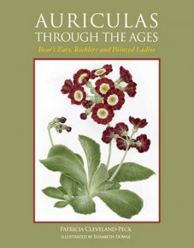 Auriculas Through the Ages