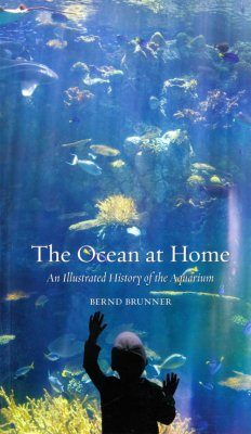 The Ocean at Home