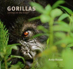 Gorillas: Living on the Edge
