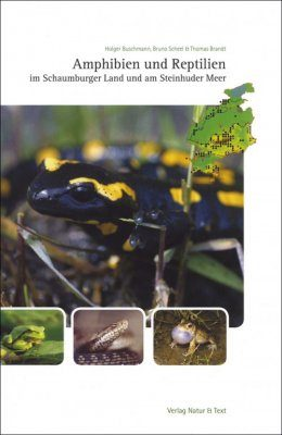 Amphibien und Reptilien im Schaumburger Land und am Steinhuder Meer [Amphibians and Reptiles in the Schaumburg District and on Lake Steinhude]