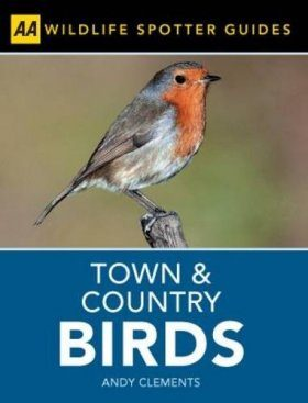 Town and Country Birds