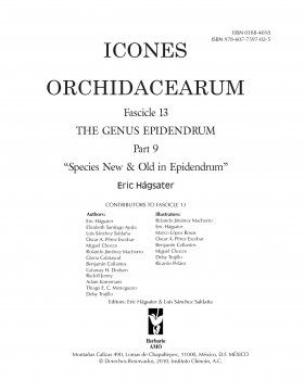 Icones Orchidacearum, Fascicle 13