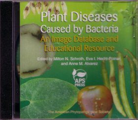 Plant Diseases Caused by Bacteria