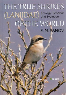 The True Shrikes (Laniidae) of the World