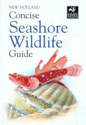 New Holland Concise Seashore Wildlife Guide