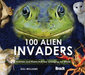 100 Alien Invaders