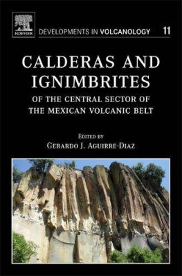 Calderas and Ignimbrites of the Central Sector of the Mexican Volcanic Belt