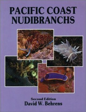 Pacific Coast Nudibranchs