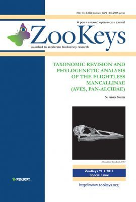 ZooKeys 91: Taxonomic Revision and Phylogenetic Analysis of the Flightless Mancallinae (Aves, Pan-Alcidae)