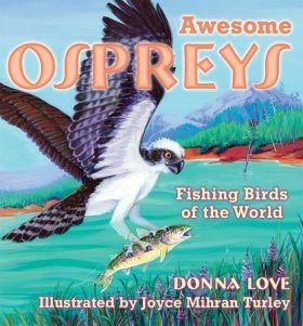 Awesome Ospreys