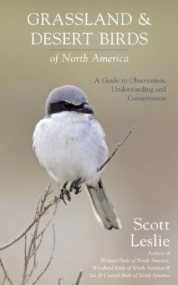 Grassland and Desert Birds of North America