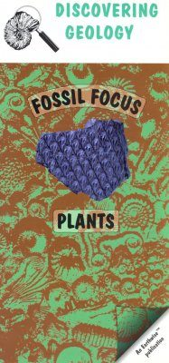 Plants: Fossil Focus Guide