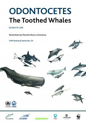Odontocetes: The Toothed Whales