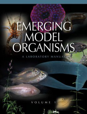 Emerging Model Organisms, Volume 1