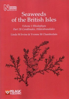 Seaweeds of the British Isles, Volume 1 Part 2b
