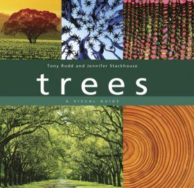 Trees: A Visual Guide