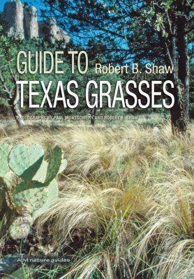 Field Guide to Texas Grasses