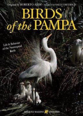 Birds of the Pampa