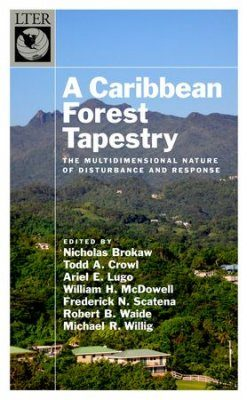 A Caribbean Forest Tapestry