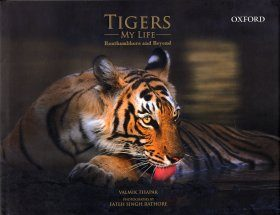 Tigers: My Life