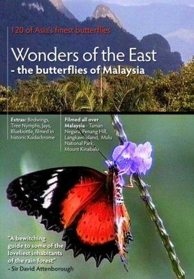 Wonders of the East - the Butterflies of Malaysia (All Regions)