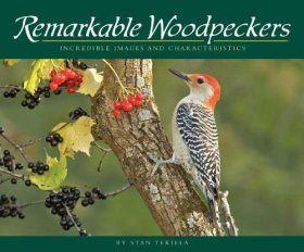 Remarkable Woodpeckers