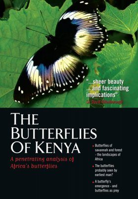 The Butterflies of Kenya (All Regions)