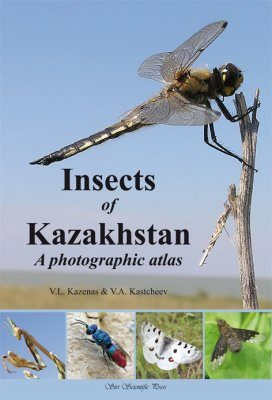 Insects of Kazakhstan