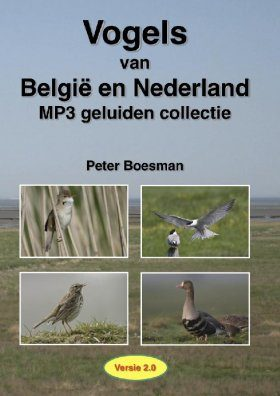 Birds of Belgium and Holland - MP3 Sound Collection